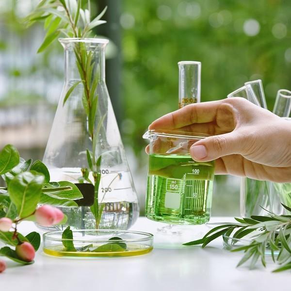 Органични козметични продукти: кои са предимствата им?